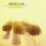 Promenade – Kevin Burke & Mícheál Ó Domhnaill cover